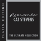 Remember Cat Stevens