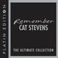 Remember Cat Stevens