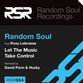 LET THE MUSIC TAKE CONTROL (Original / David Penn / Random Soul / Husky mix)